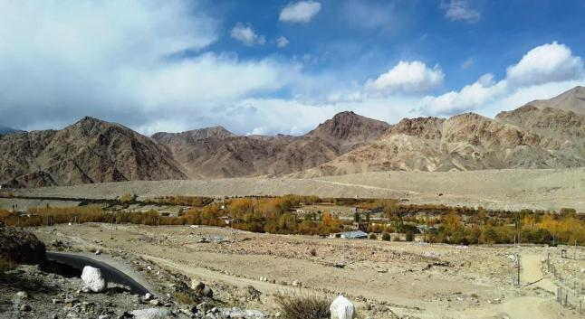 Leh City Limits